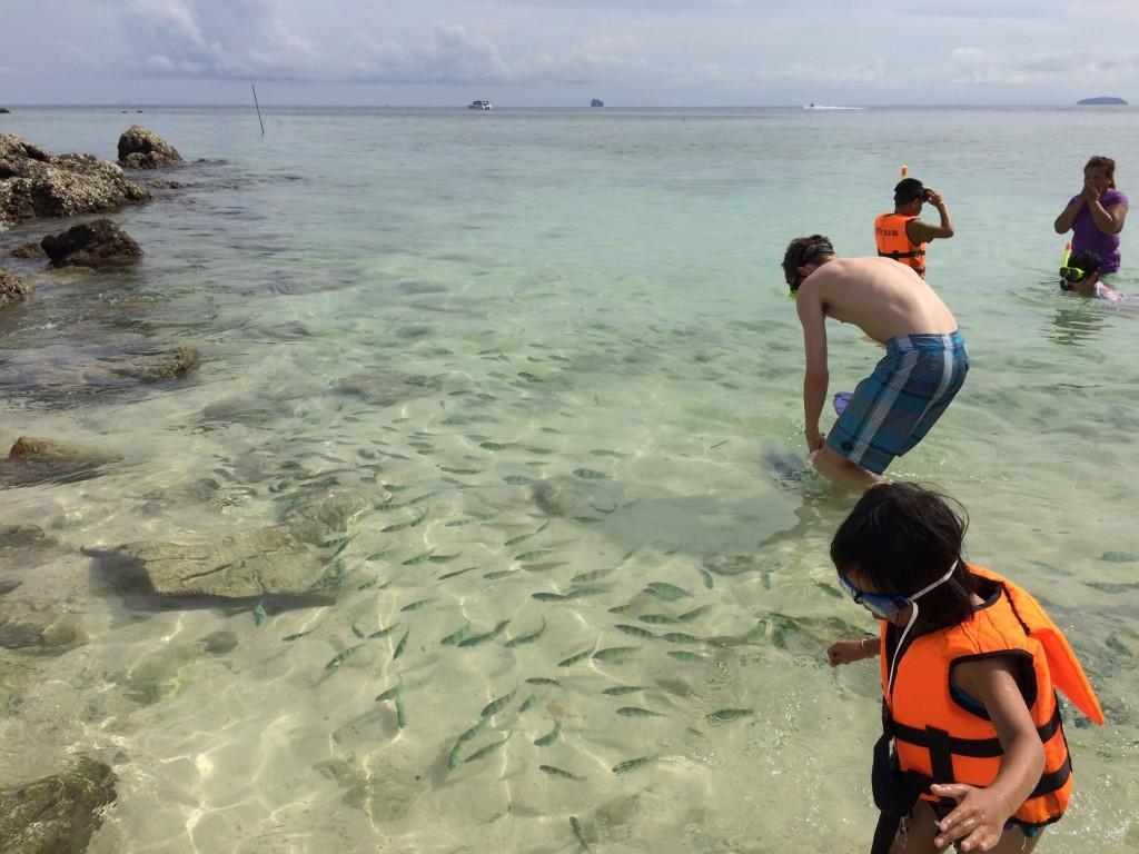 Snorkling Phuket Islands