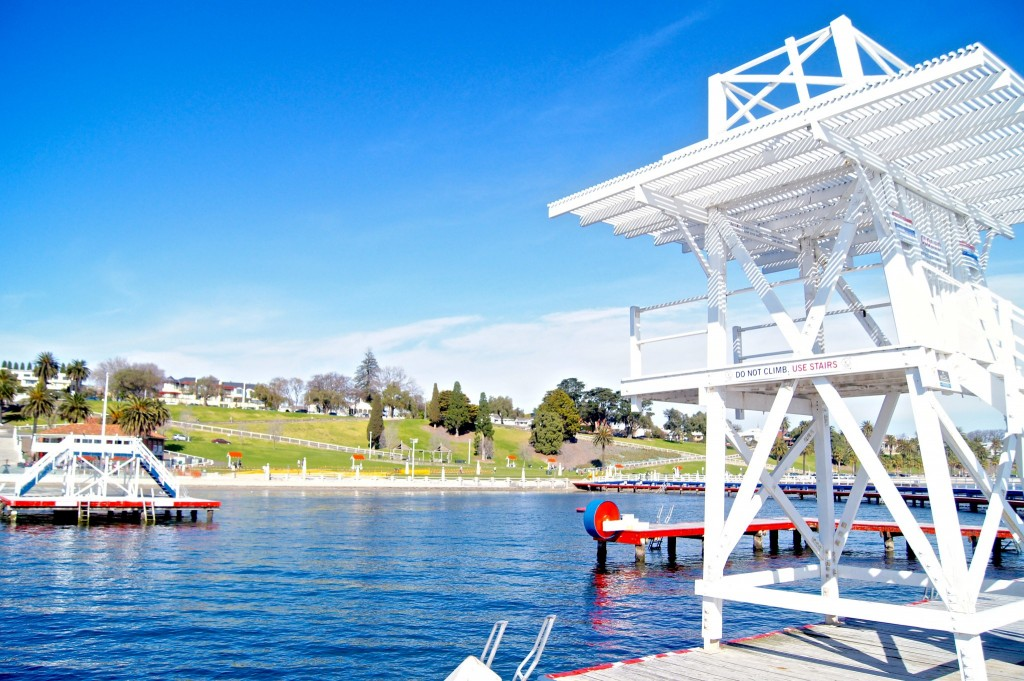 101-things-to-see-and-do-in-Geelong-swimming-enclosure