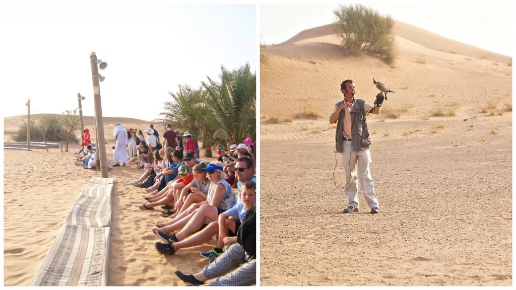 Falcon-show-dubai-desert-safari-2-copyright