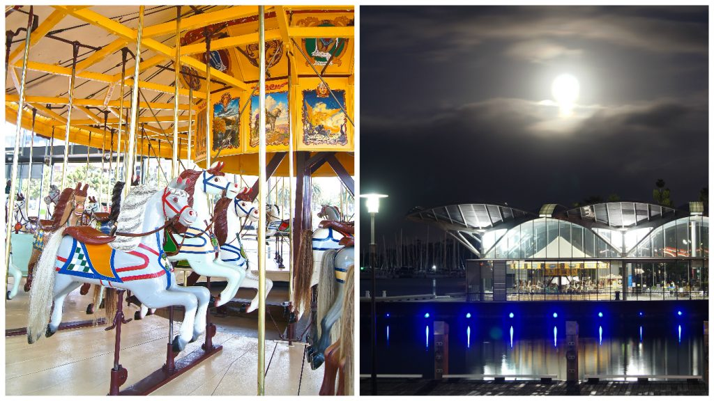 101-things-to-see-and-do-in-geelong-carousel