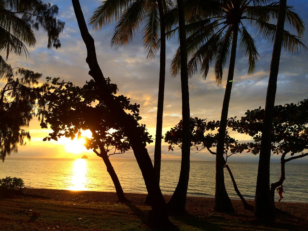 Palm+Cove+Beach+What+is+Palm+Cove+like+What+to+do+in+Palm+Cove+Sunrise