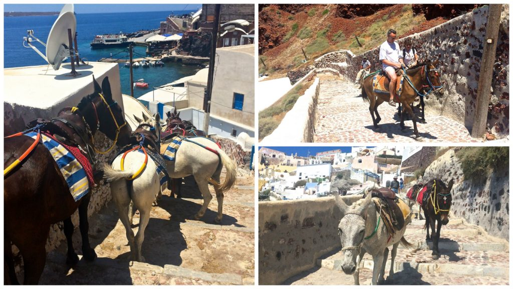 Oia+Santorini+Ammoudi+Bay+Seafood+Restaurants+Port+Donkeys