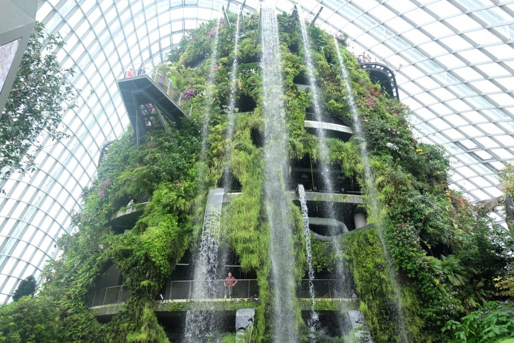 Gardens by the Bay Cloud Forest ©