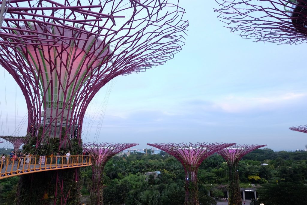 Gardens by the Bay ©