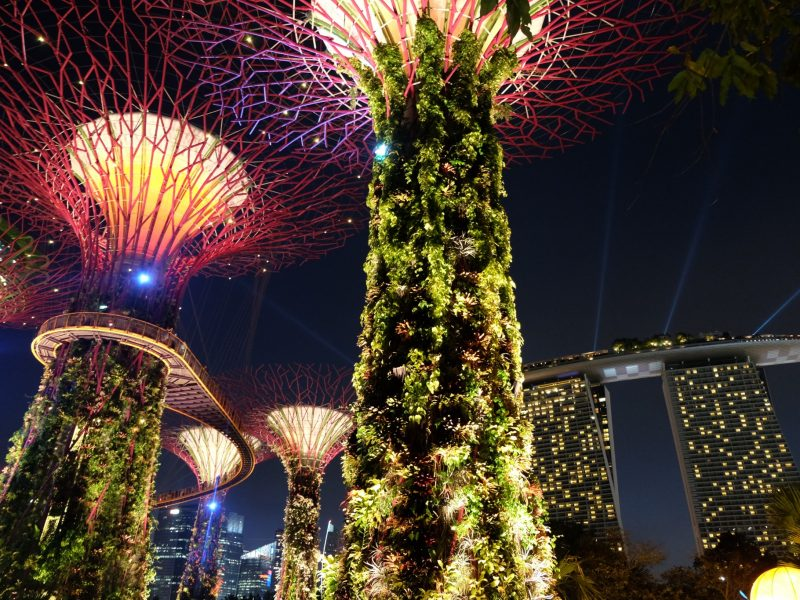 Gardens by the Bay at night ©